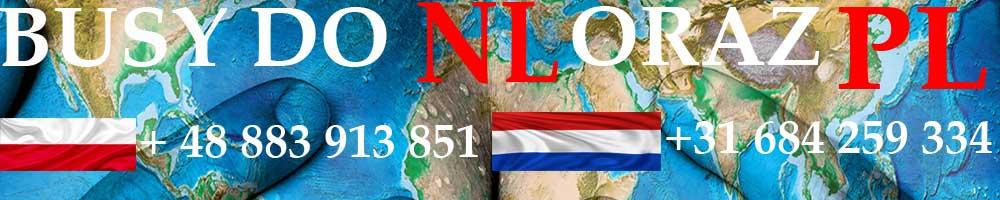 Busy do Holandii, Beligii, Niemiec